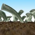 Нормативная денежная оценка земли